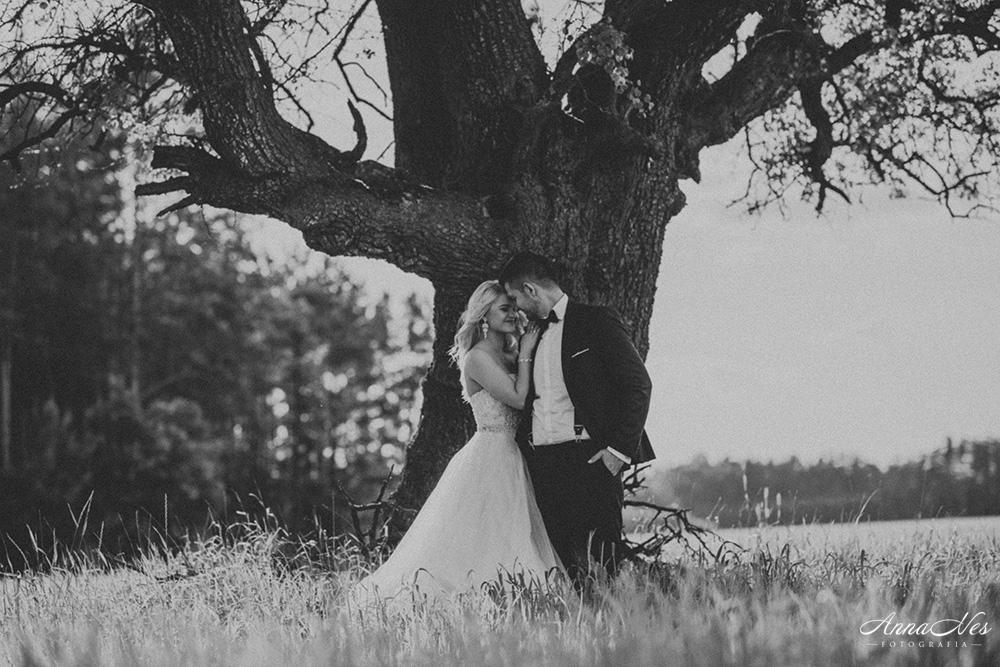 fotograf-ślubny-Beata2016-123