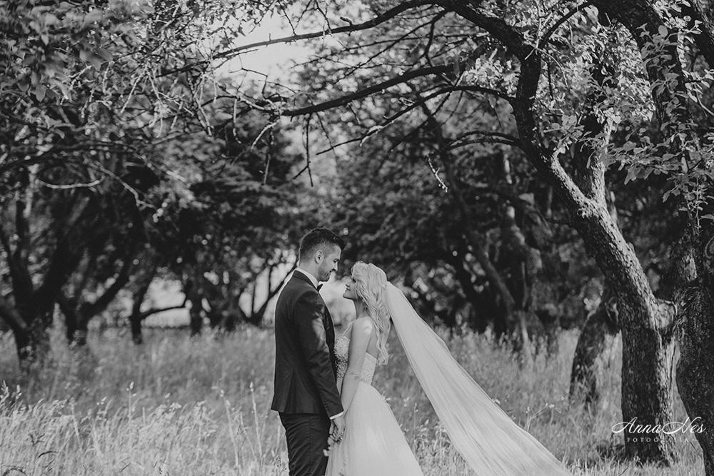 fotograf-ślubny-Beata2016-129