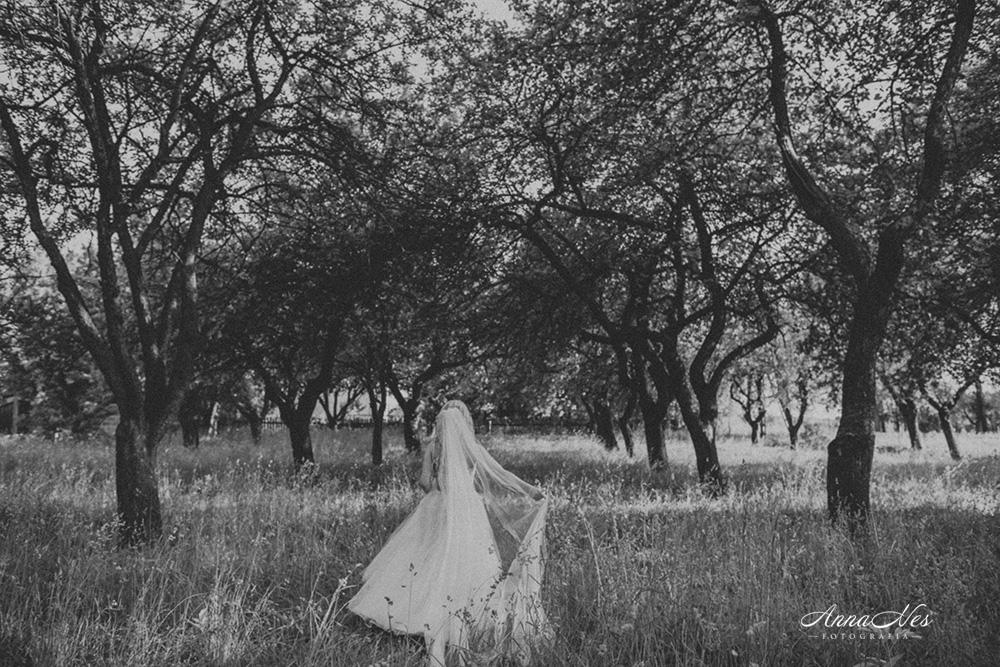 fotograf-ślubny-Beata2016-131