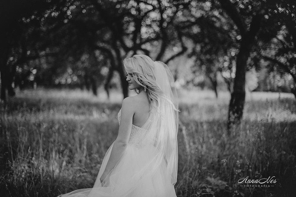 fotograf-ślubny-Beata2016-132