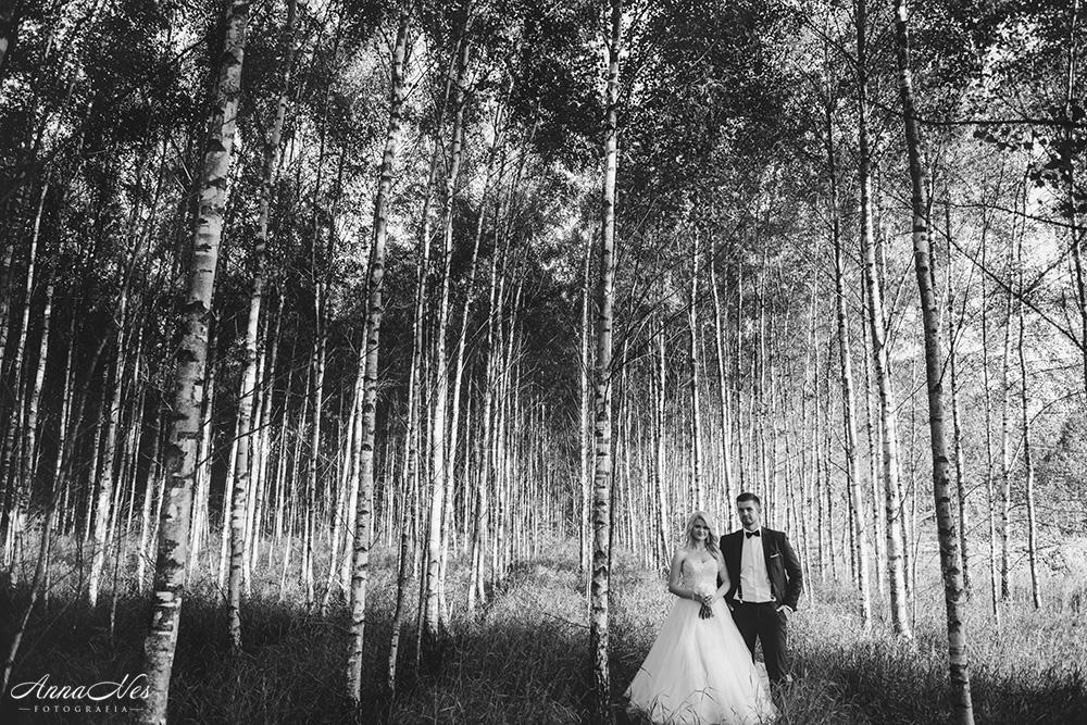fotograf-ślubny-Beata2016-139