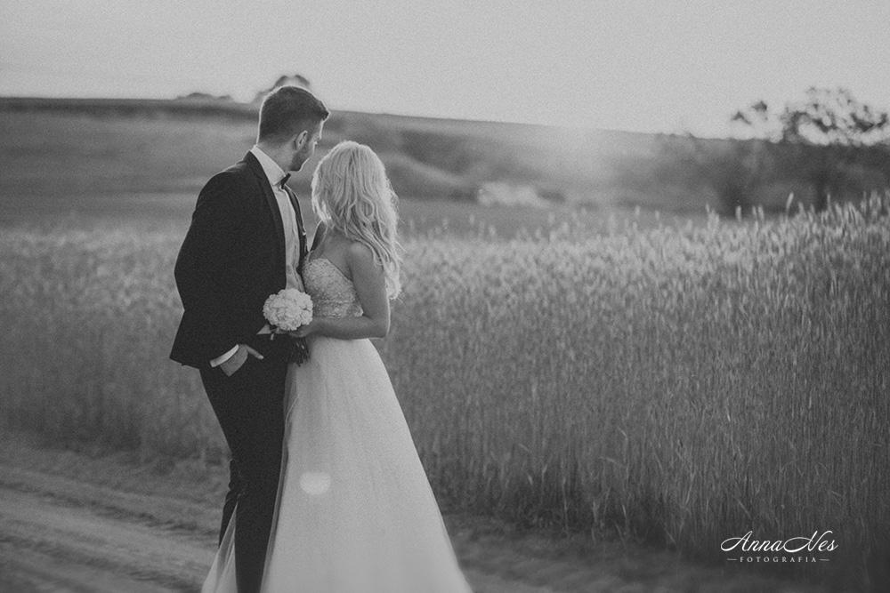 fotograf-ślubny-Beata2016-151