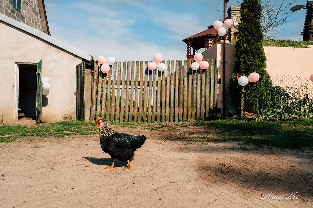 fotograf-ślubny-Beata2016-9