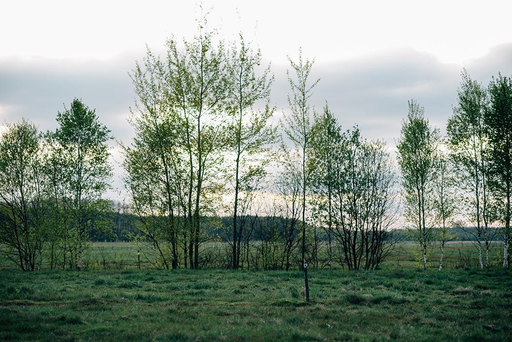 fotografia-monastyr-bialystok-2017-129