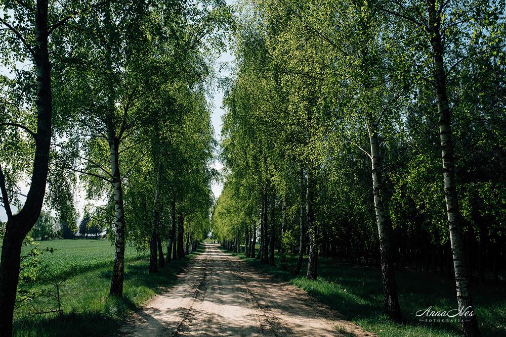 fotografia-monastyr-bialystok-2017-2